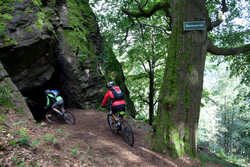pic_Mountainbiken im Weltnaturerbe Hainich
